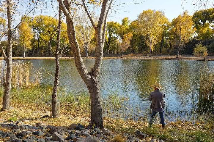 A man fishing at Dead Horse Ranch State Park in Arizona
